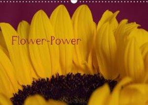 Levi, A: Flower-Power