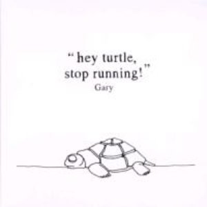 Hey Turtle,Stop Running!