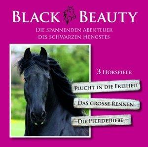 Die spannenden Abenteuer des Schwarzen Hengstes