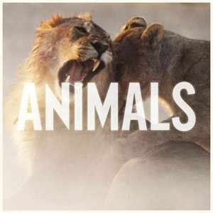 Animals (2-Track)