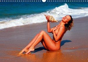 Topless (Posterbuch DIN A4 quer)