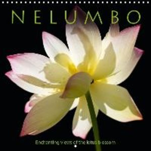 N E L U M B O - Enchanting views of the lotus blossom (Wall Cale