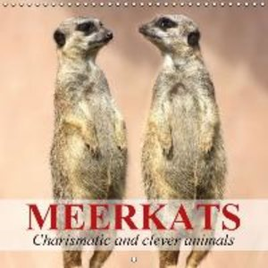 Meerkats - Charismatic and clever animals (Wall Calendar 2015 30