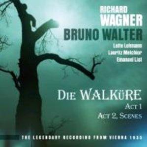 Die Walküre, Act 1