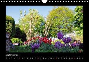 Liepke, C: Istanbul - Zeit der Tulpenblüte (Wandkalender 201