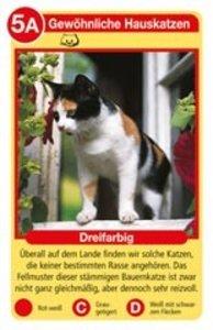 Ravensburger 20421 - Katzen