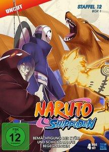 Naruto Shippuden - Staffel 12: Folge 463-495