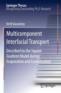 Multicomponent Interfacial Transport as Described by the Square