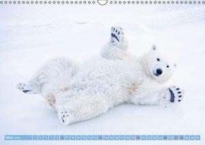 Eisbären: Lebenskünstler im Eis (Wandkalender 2016 DIN A3 quer)