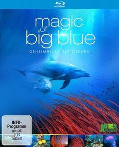 Magic of Big Blue - Geheimnisse der Ozeane