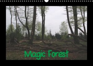 Bernds, U: Magic Forest / UK-Version