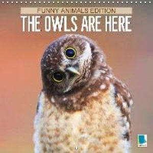 The owls are here: Funny animals edition (Wall Calendar 2015 300