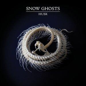Husk (12\'\'/180g/Clear Vinyl)
