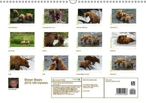 Brown Bears 2015 UK-Version (Wall Calendar 2015 DIN A3 Landscape
