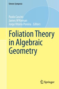 Foliation Theory in Algebraic Geometry