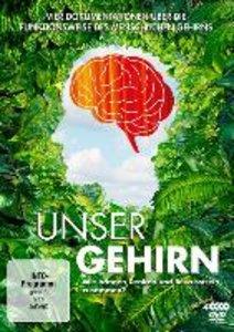 Unser Gehirn - Vierteilige DVD-Edition