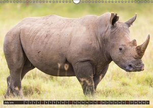 Kenya 2015 / UK-Version (Wall Calendar 2015 DIN A3 Landscape)