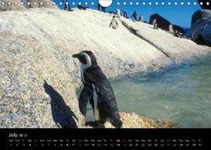 CAPE TOWN 2015 (Wall Calendar 2015 DIN A4 Landscape)