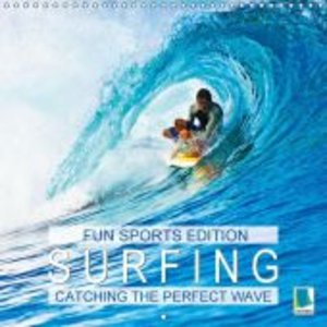 Fun sports edition: Surfing - Catching the perfect wave (Wall Ca