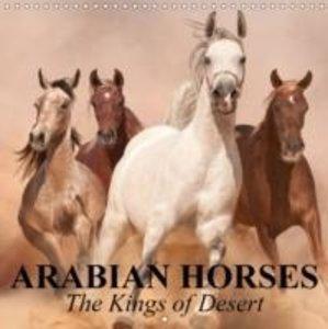 Arabian Horses . The Kings of Desert (Wall Calendar 2015 300 × 3