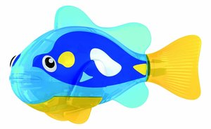Robo Fish Powder Blue Tang