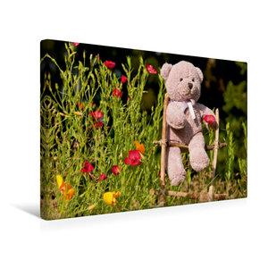 Premium Textil-Leinwand 45 cm x 30 cm quer Kletterbär im Garten