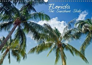 Viola, M: Florida - The Sunshine State (Wandkalender 2015 DI