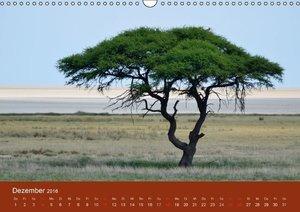 Namibia (Wandkalender 2016 DIN A3 quer)