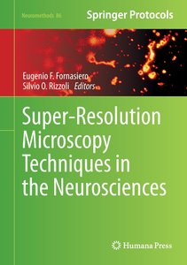 Super-Resolution Microscopy Techniques in the Neurosciences