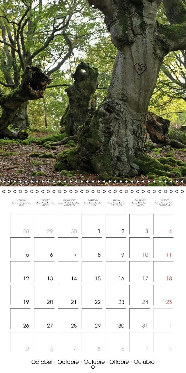 Emotions in pictures (Wall Calendar 2015 300 &times 300 mm Squar - zum Schließen ins Bild klicken