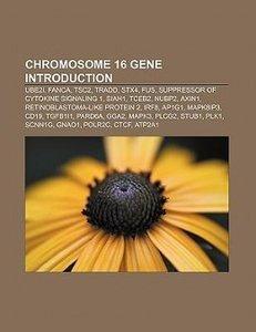 Chromosome 16 gene Introduction