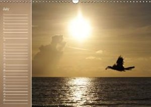 Colors by the Sea (Wall Calendar perpetual DIN A3 Landscape)
