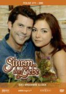 Sturm der Liebe 28 (DVD)