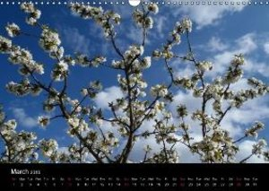 Easy Living in Greece (Wall Calendar 2015 DIN A3 Landscape)
