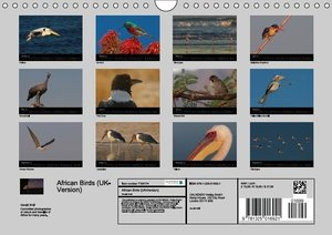 African Birds (UK-Version) (Wall Calendar 2015 DIN A4 Landscape)
