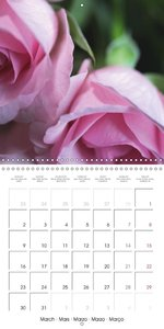 FLOWERS TO RELAX (Wall Calendar 2015 300 &times 300 mm Square)