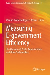 Measuring E-government Efficiency