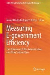Measuring E-government Efficiency