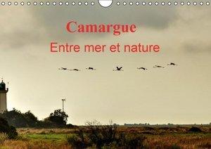 Camargue Entre mer et nature (Calendrier mural 2015 DIN A4 horiz