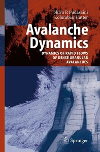 Avalanche Dynamics