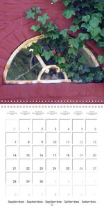 Doors and windows (Wall Calendar 2015 300 × 300 mm Square)