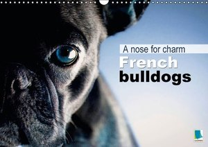 A Nose for Charm - French Bulldogs