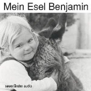 Mein Esel Benjamin
