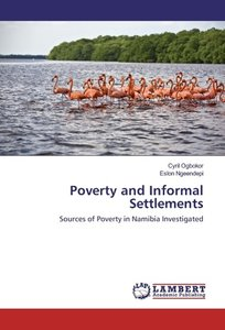 Poverty and Informal Settlements