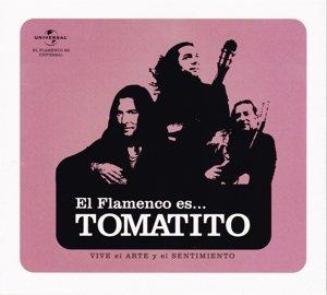 El Flamenco Es