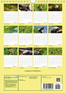 Langsame Schildkröten