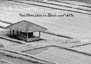 Reisterassen in Black and White (Wandkalender 2016 DIN A2 quer)