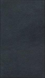 Werke in zeitlicher Folge. Frankfurter Ausgabe in zwölf Bänden