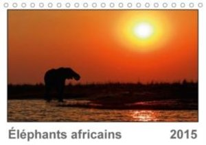 Wolf, G: Elephants Africains (Fr-Version)
