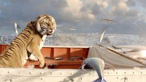 Schiffbruch mit Tiger - Life of Pi